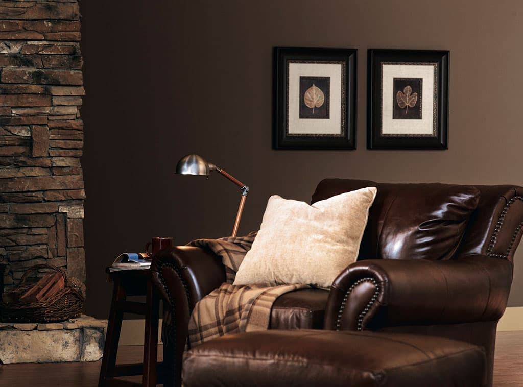 Richly brown brown color room scenes Brown wall color living room